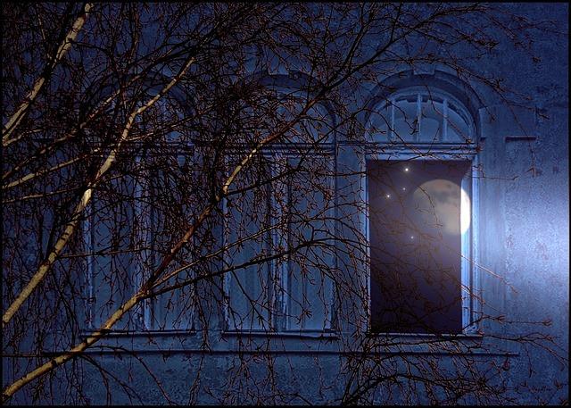 New Year's Window