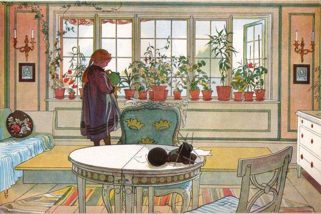 The Flower Window